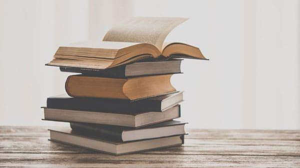 Seelenprügel - Eine Buchbesprechung
